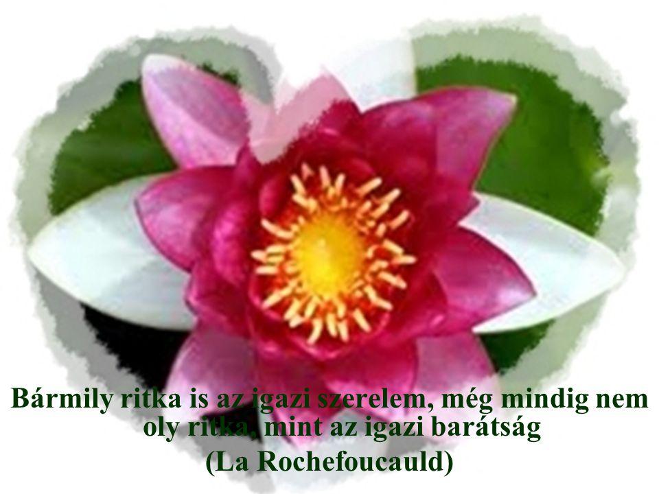 Bármily ritka is az igazi szerelem, még mindig nem oly ritka, mint az igazi barátság (La Rochefoucauld)
