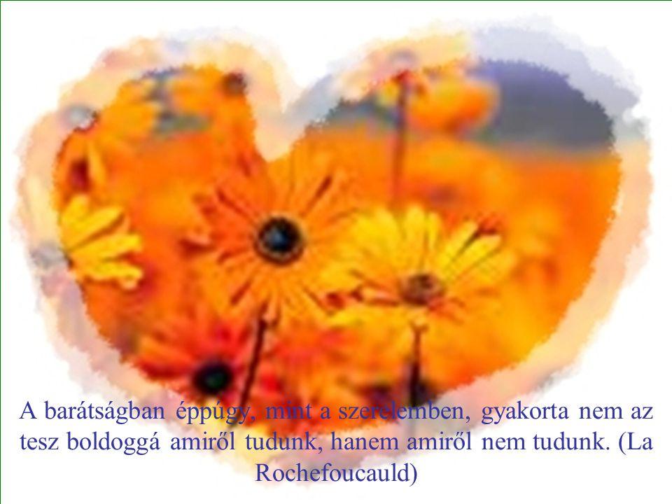 A barátságban éppúgy, mint a szerelemben, gyakorta nem az tesz boldoggá amiről tudunk, hanem amiről nem tudunk. (La Rochefoucauld)