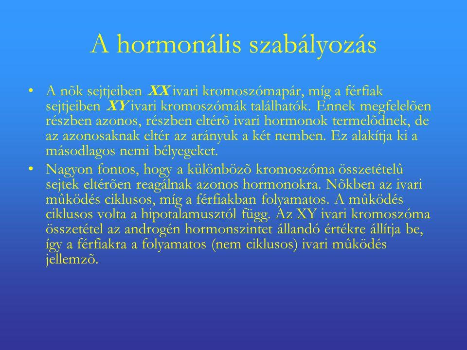 A hormonális szabályozás •A nõk sejtjeiben XX ivari kromoszómapár, míg a férfiak sejtjeiben XY ivari kromoszómák találhatók.