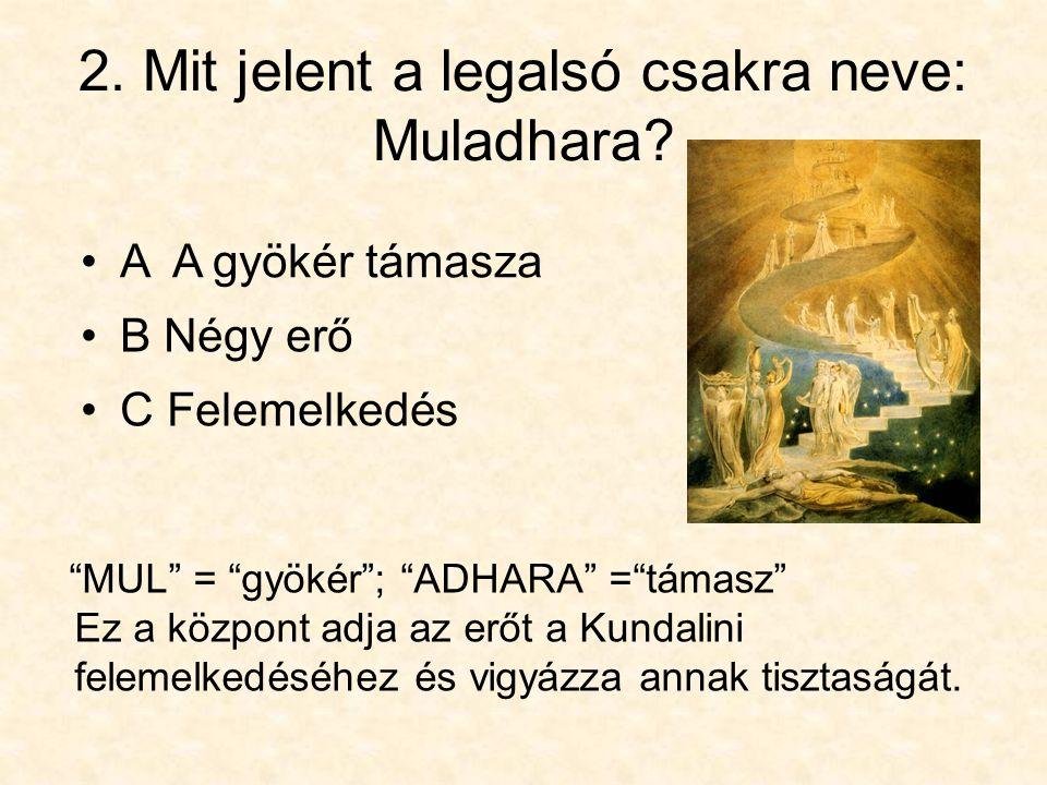 """2. Mit jelent a legalsó csakra neve: Muladhara? •C Felemelkedés """"MUL"""" = """"gyökér""""; """"ADHARA"""" =""""támasz"""" Ez a központ adja az erőt a Kundalini felemelkedé"""