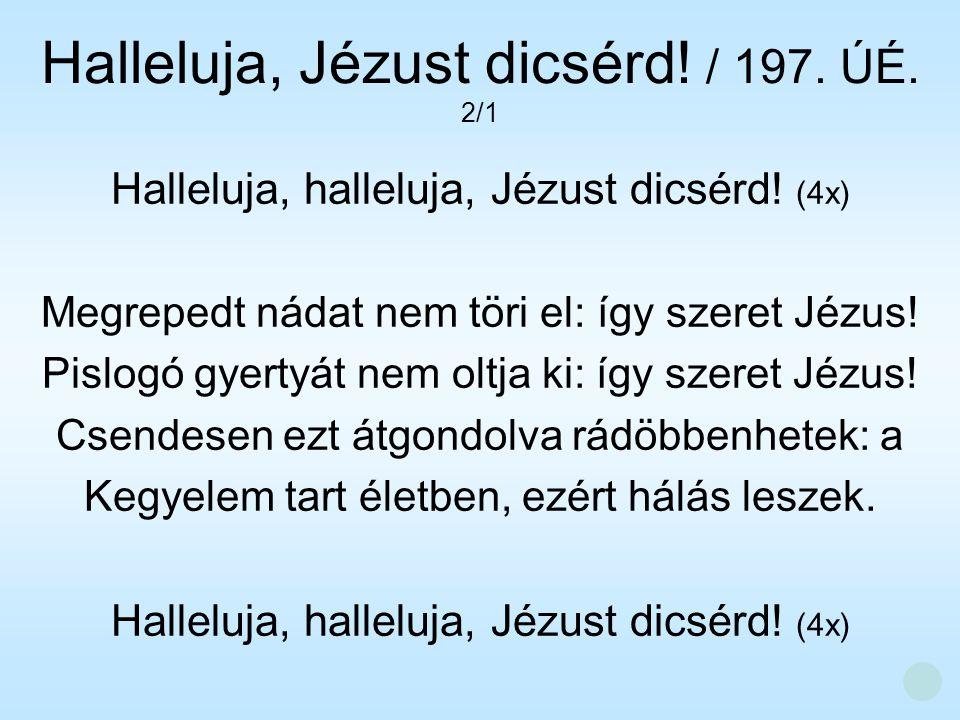 Halleluja, halleluja, Jézust dicsérd! (4x) Megrepedt nádat nem töri el: így szeret Jézus! Pislogó gyertyát nem oltja ki: így szeret Jézus! Csendesen e