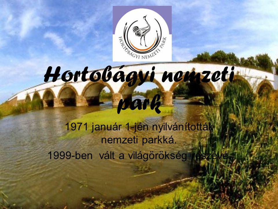 Hortobágyi nemzeti park 1971 január 1-jén nyilvánították nemzeti parkká.