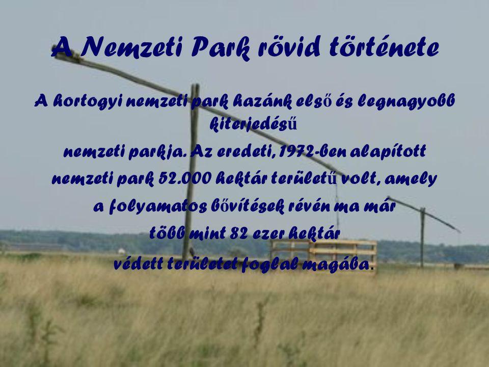 A Nemzeti Park rövid története A hortogyi nemzeti park hazánk els ő és legnagyobb kiterjedés ű nemzeti parkja.
