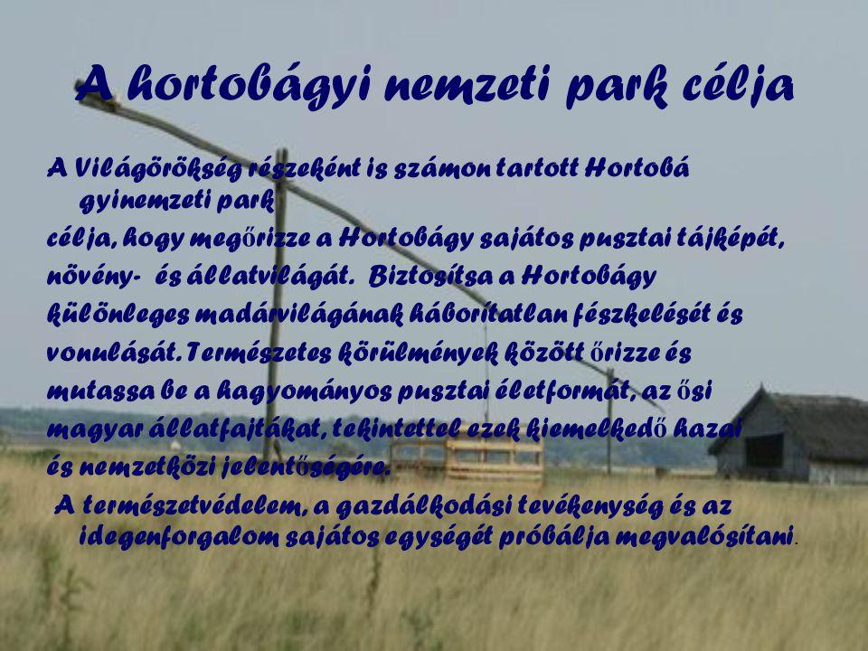 A hortobágyi nemzeti park célja A Világörökség részeként is számon tartott Hortobá gyinemzeti park célja, hogy meg ő rizze a Hortobágy sajátos pusztai tájképét, növény- és állatvilágát.