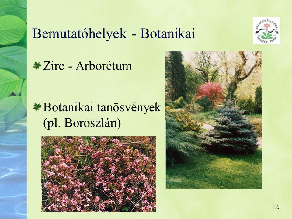 10 Bemutatóhelyek - Botanikai Zirc - Arborétum Botanikai tanösvények (pl. Boroszlán)