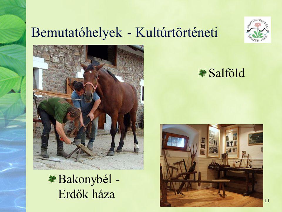 11 Bemutatóhelyek - Kultúrtörténeti Salföld Bakonybél - Erdők háza