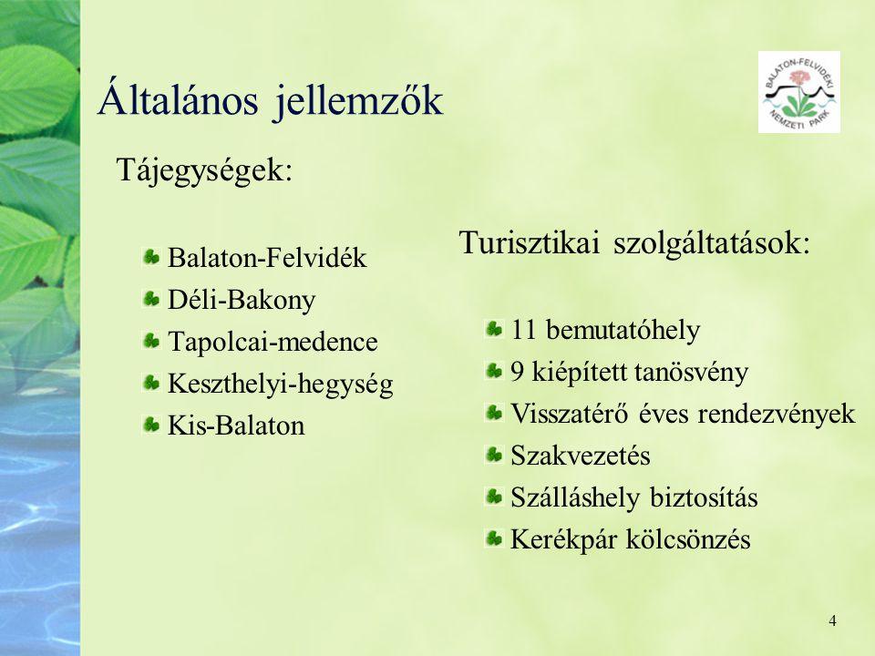 4 Általános jellemzők Tájegységek: Balaton-Felvidék Déli-Bakony Tapolcai-medence Keszthelyi-hegység Kis-Balaton Turisztikai szolgáltatások: 11 bemutat
