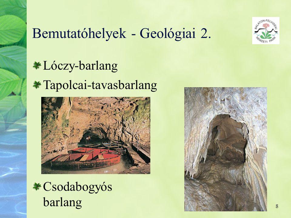 8 Bemutatóhelyek - Geológiai 2. Lóczy-barlang Tapolcai-tavasbarlang Csodabogyós barlang