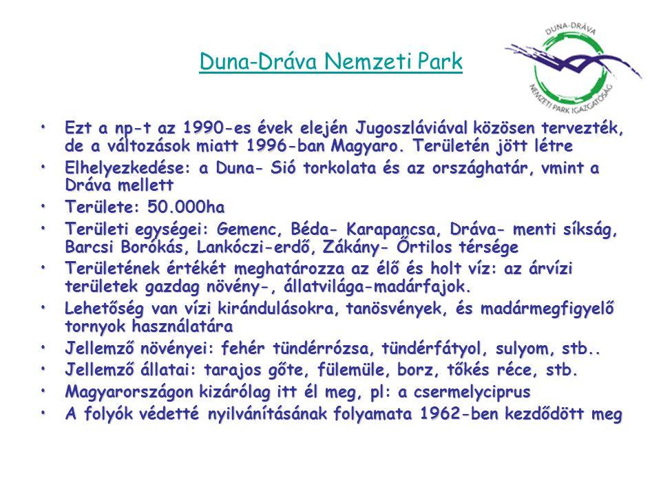 Duna-Dráva Nemzeti Park •Ezt a np-t az 1990-es évek elején Jugoszláviával közösen tervezték, de a változások miatt 1996-ban Magyaro. Területén jött lé