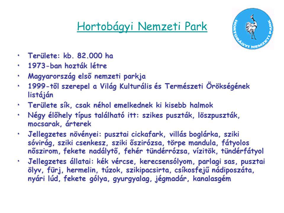 Hortobágyi Nemzeti Park •Területe: kb. 82.000 ha •1973-ban hozták létre •Magyarország első nemzeti parkja •1999-től szerepel a Világ Kulturális és Ter
