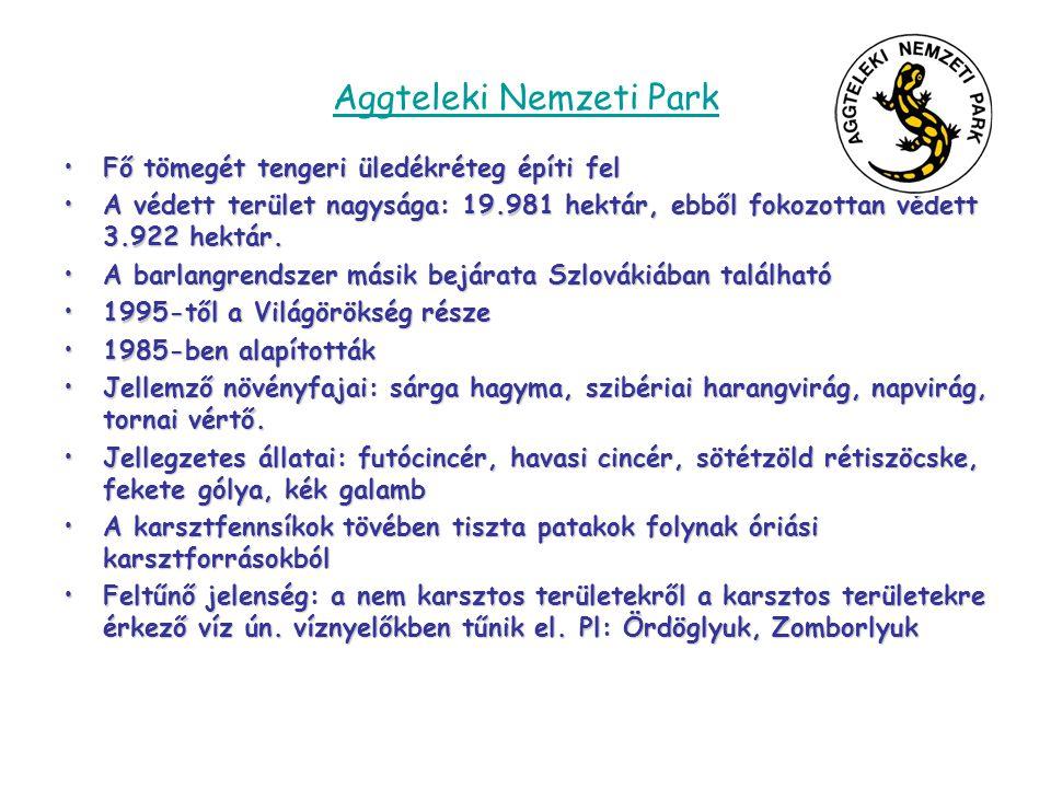 Aggteleki Nemzeti Park •Fő tömegét tengeri üledékréteg építi fel •A védett terület nagysága: 19.981 hektár, ebből fokozottan védett 3.922 hektár. •A b