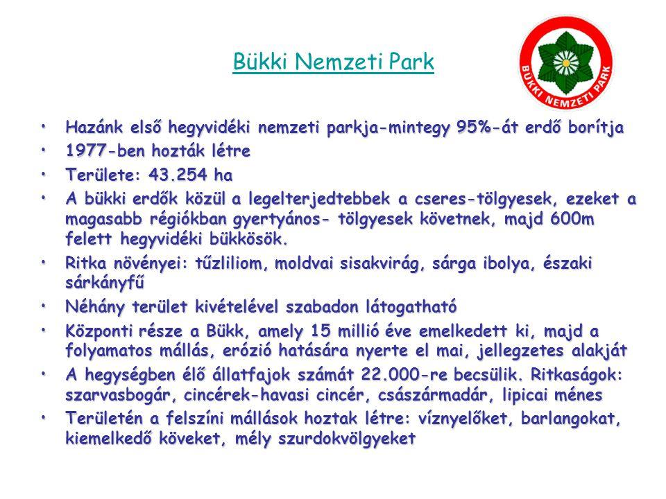Örségi Nemzeti Park •2002-ben hozták létre •Területe: 44.000 ha •Területi egységei: Őrség, Vendvidék, Rába folyó völgye, Szentgyörgyvölgy •Területén több mint 200 forrás található •Szalafő őserdejében 1950 óta nem vágtak ki és nem is ültettek fát, ember itt nem avatkozhat a természet dolgába •Tíz ritka tőzegmohafaj élőhelye •Jellegzetes növényei: fecsketárnics, zergeboglár, sárga liliom, gyapjúsás, szibériai nőszirom, vidrafű, kereklevelű harmatfű, tavaszi hérics, fekete kökörcsin, piros kígyósziszt, hegyi árvalányhaj •Jellegzetes állatai: bagolyfélék, holló, vörös vércse