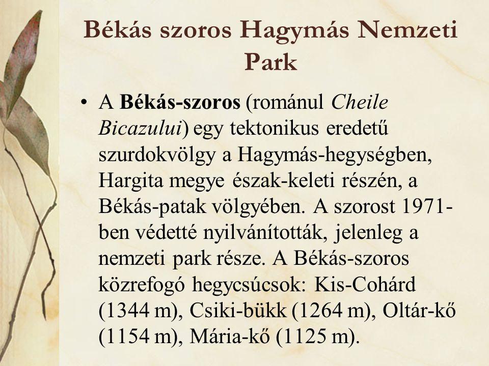 Békás szoros Hagymás Nemzeti Park •A Békás-szoros (románul Cheile Bicazului) egy tektonikus eredetű szurdokvölgy a Hagymás-hegységben, Hargita megye é