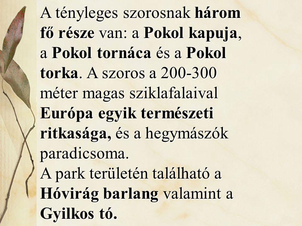 A tényleges szorosnak három fő része van: a Pokol kapuja, a Pokol tornáca és a Pokol torka. A szoros a 200-300 méter magas sziklafalaival Európa egyik