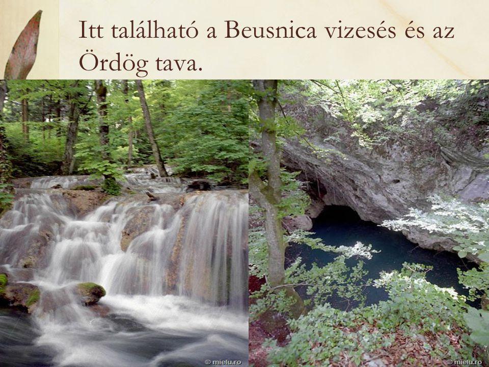 Itt található a Beusnica vizesés és az Ördög tava.
