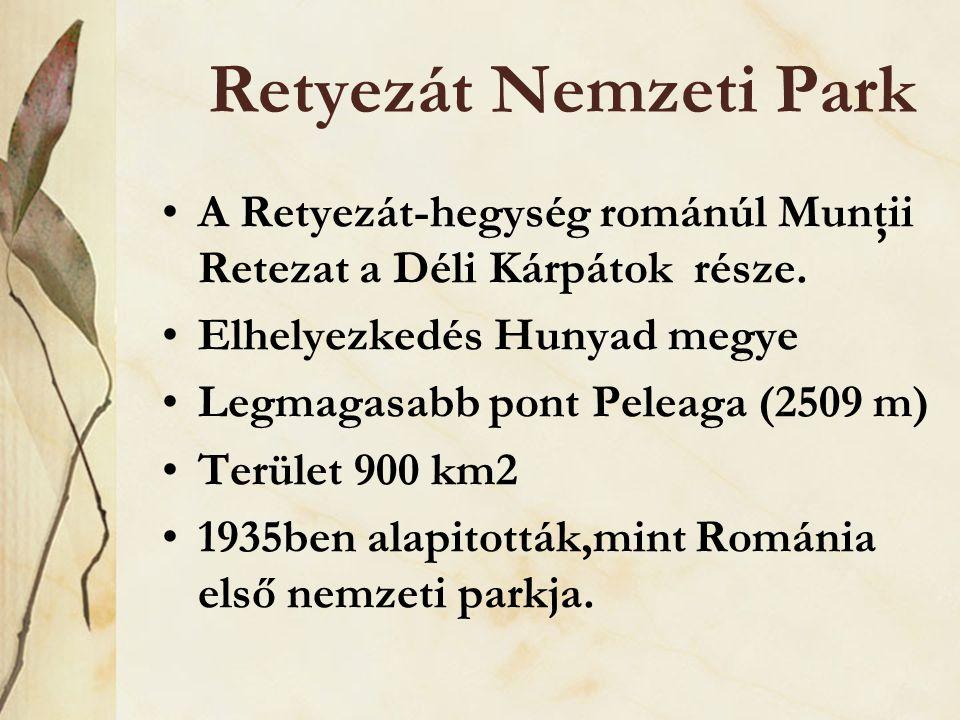 Retyezát Nemzeti Park •A Retyezát-hegység románúl Munţii Retezat a Déli Kárpátok része. •Elhelyezkedés Hunyad megye •Legmagasabb pont Peleaga (2509 m)