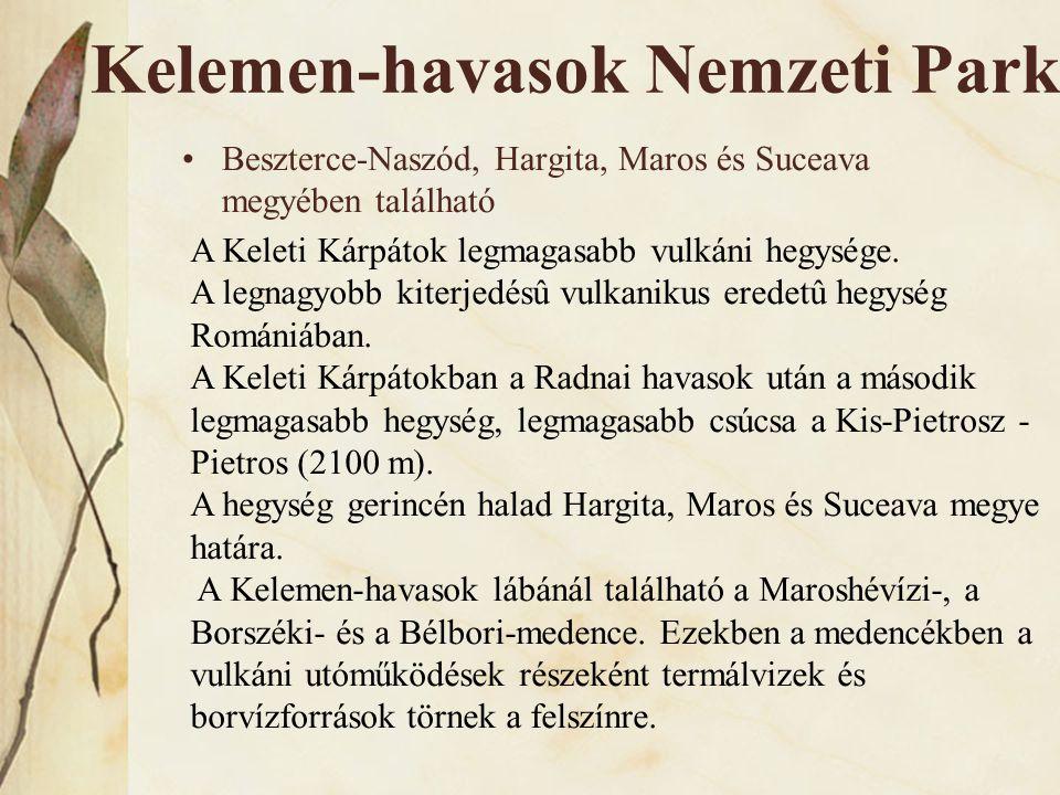 Kelemen-havasok Nemzeti Park •Beszterce-Naszód, Hargita, Maros és Suceava megyében található A Keleti Kárpátok legmagasabb vulkáni hegysége. A legnagy
