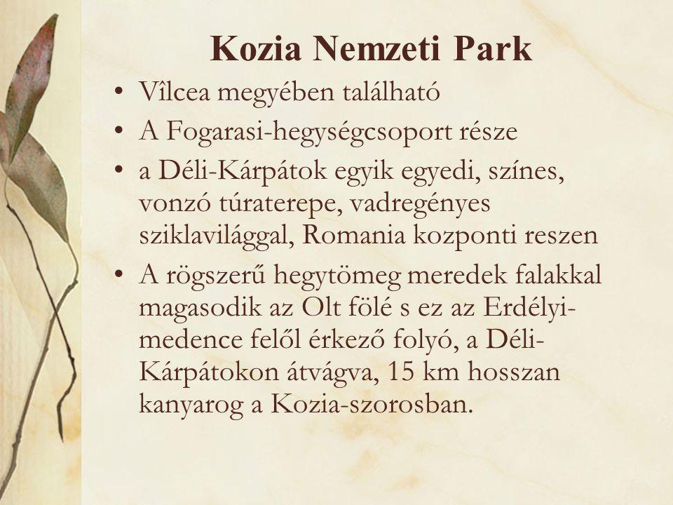 Kozia Nemzeti Park •Vîlcea megyében található •A Fogarasi-hegységcsoport része •a Déli-Kárpátok egyik egyedi, színes, vonzó túraterepe, vadregényes sz