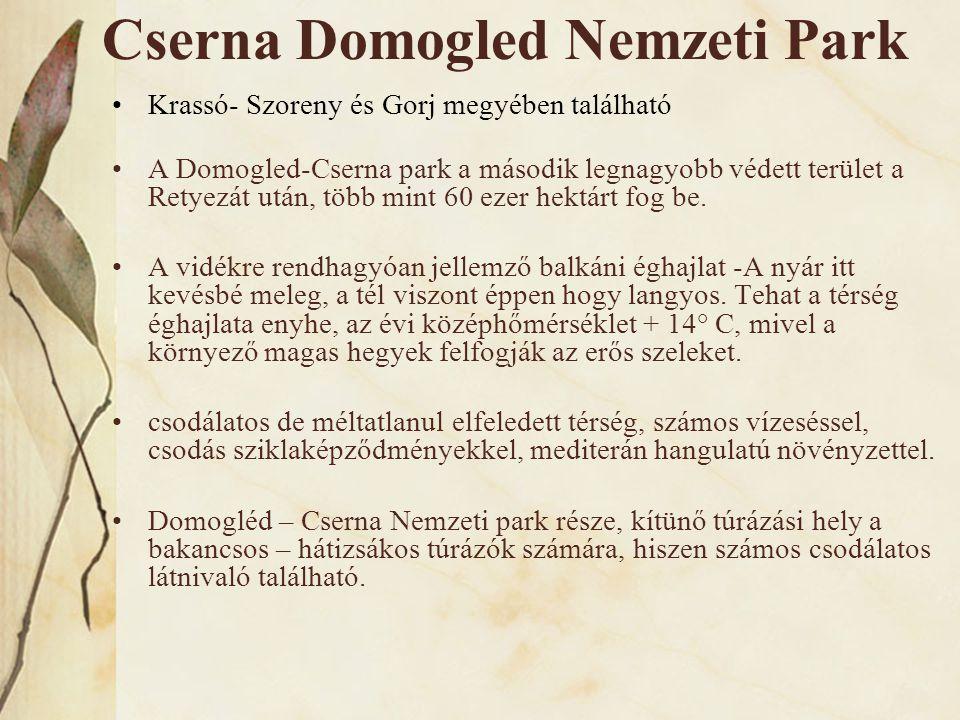 Cserna Domogled Nemzeti Park •Krassó- Szoreny és Gorj megyében található •A Domogled-Cserna park a második legnagyobb védett terület a Retyezát után,