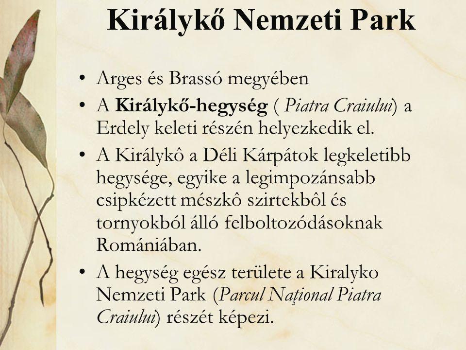 Királykő Nemzeti Park •Arges és Brassó megyében •A Királykő-hegység ( Piatra Craiului) a Erdely keleti részén helyezkedik el. •A Királykô a Déli Kárpá