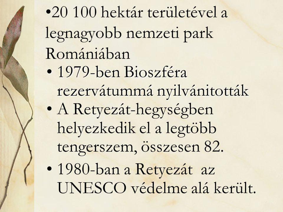 •20 100 hektár területével a legnagyobb nemzeti park Romániában •1979-ben Bioszféra rezervátummá nyilvánitották •A Retyezát-hegységben helyezkedik el