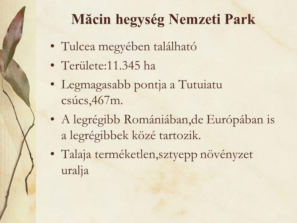 Măcin hegység Nemzeti Park •Tulcea megyében található •Területe:11.345 ha •Legmagasabb pontja a Tutuiatu csúcs,467m. •A legrégibb Romániában,de Európá