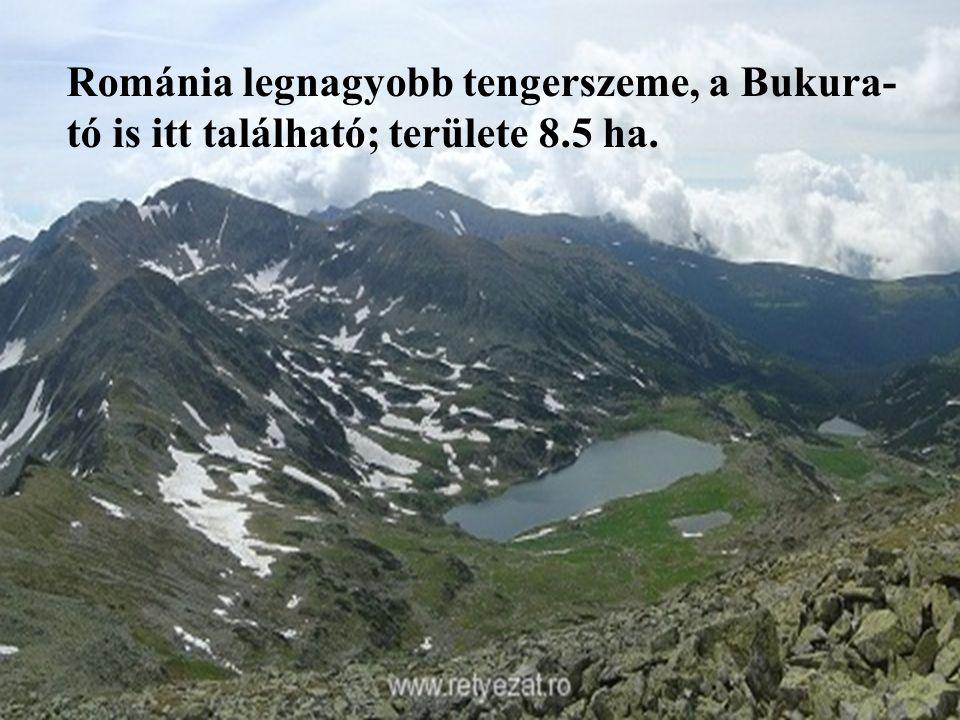 Románia legnagyobb tengerszeme, a Bukura- tó is itt található; területe 8.5 ha.