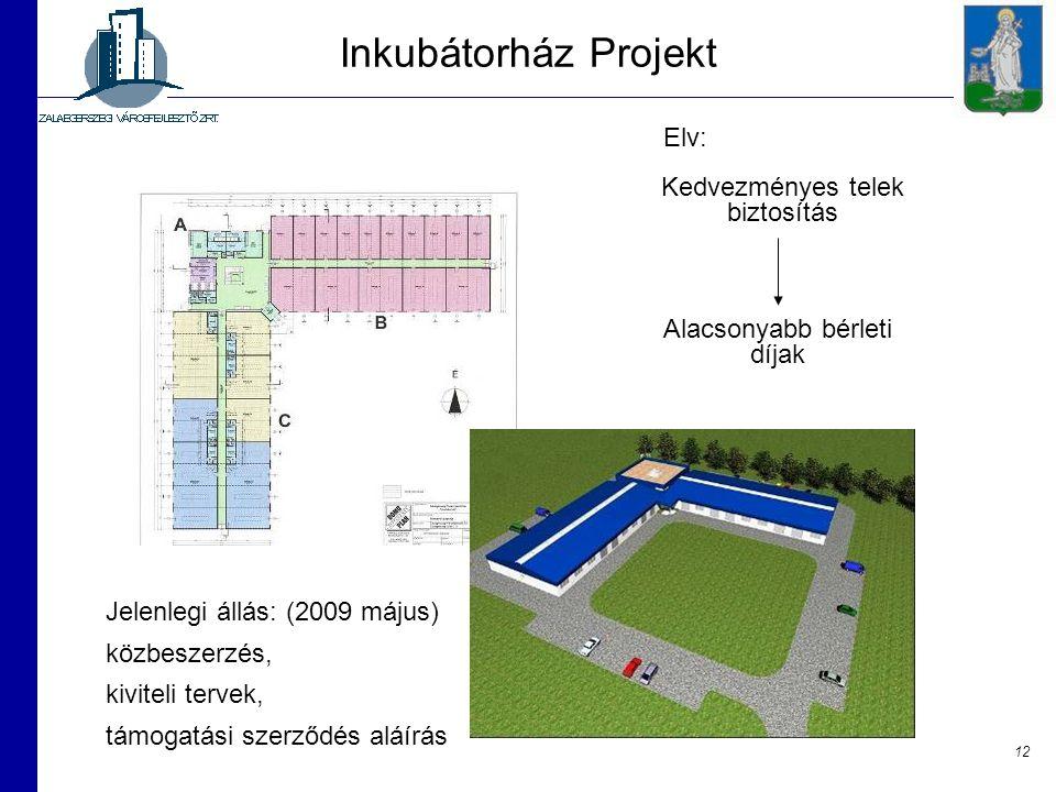 12 Inkubátorház Projekt Kedvezményes telek biztosítás Alacsonyabb bérleti díjak Jelenlegi állás: (2009 május) közbeszerzés, kiviteli tervek, támogatás
