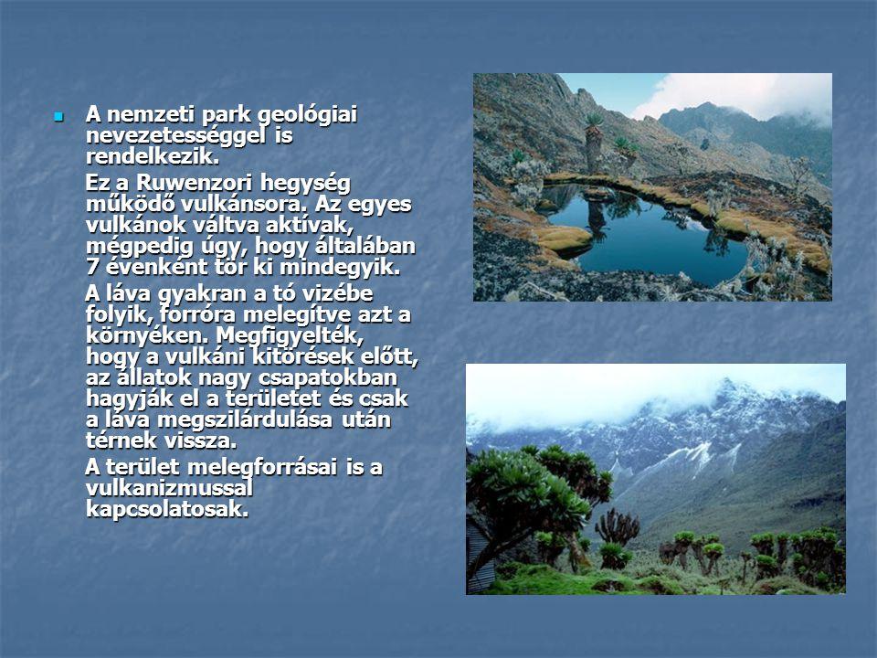  A nemzeti park geológiai nevezetességgel is rendelkezik. Ez a Ruwenzori hegység működő vulkánsora. Az egyes vulkánok váltva aktívak, mégpedig úgy, h
