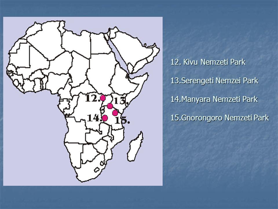 12. Kivu Nemzeti Park 13.Serengeti Nemzei Park 14.Manyara Nemzeti Park 15.Gnorongoro Nemzeti Park