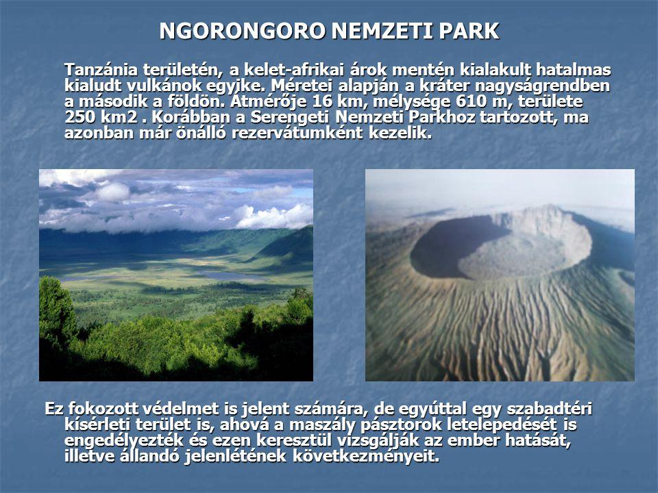 Tanzánia területén, a kelet-afrikai árok mentén kialakult hatalmas kialudt vulkánok egyike. Méretei alapján a kráter nagyságrendben a második a földön