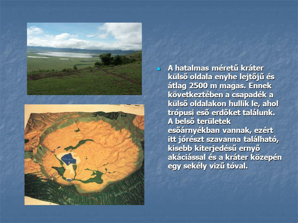  A hatalmas méretű kráter külső oldala enyhe lejtőjű és átlag 2500 m magas. Ennek következtében a csapadék a külső oldalakon hullik le, ahol trópusi
