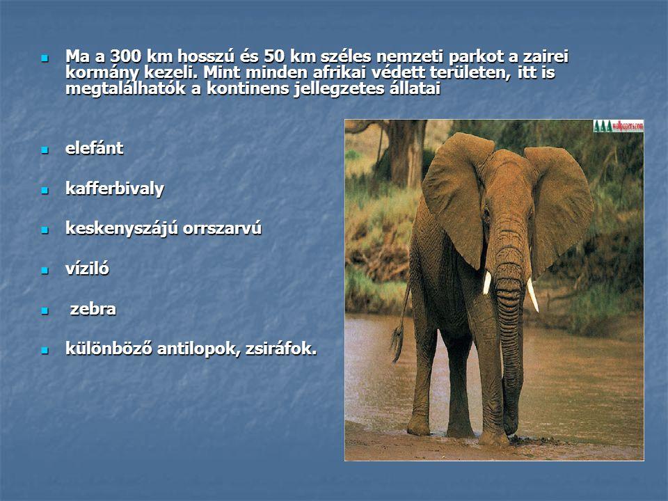  Ma a 300 km hosszú és 50 km széles nemzeti parkot a zairei kormány kezeli. Mint minden afrikai védett területen, itt is megtalálhatók a kontinens je