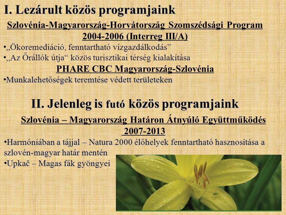 """I. Lezárult közös programjaink Szlovénia-Magyarország-Horvátország Szomszédsági Program 2004-2006 (Interreg III/A) • """"Ökoremediáció, fenntartható vízg"""