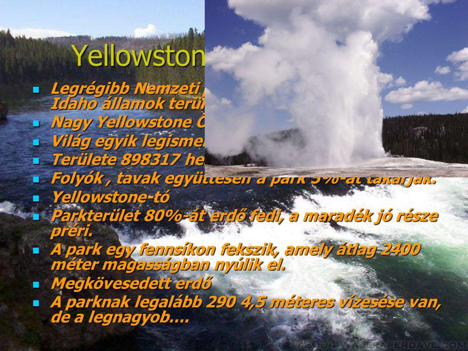 Yellowstone Nemzeti park  Legrégibb Nemzeti park. A Wyoming, Montana és Idaho államok területén fekszik.  Nagy Yellowstone Ökorendszer  Világ egyik
