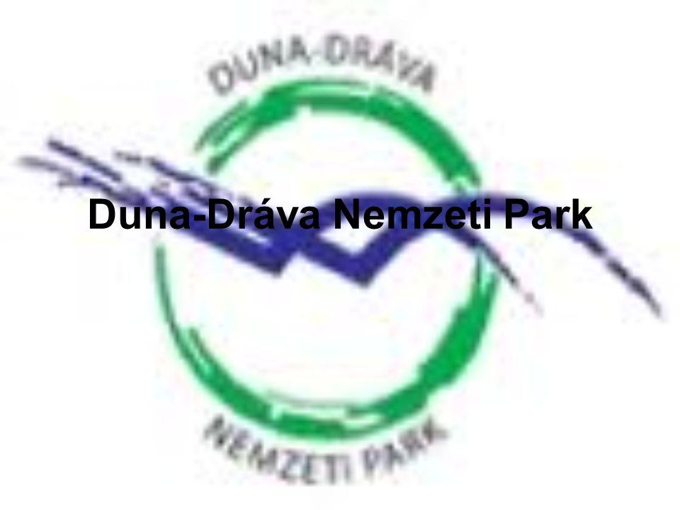Létrejötte, elhelyezkedése •Az 1990-es évek elején eredetileg Jugoszláviával közösen tervezett nemzeti park a közben bekövetkezett változások miatt nem alakulhatott meg, így a Duna–Dráva Nemzeti Park 1996-ban csak Magyarország területén jött létre.
