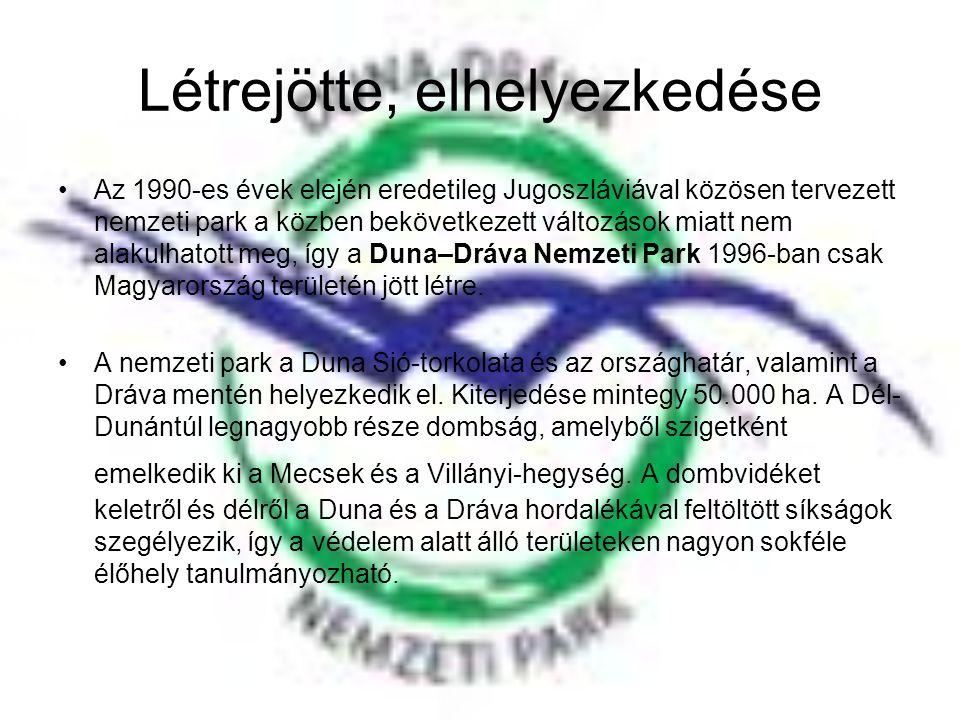 Létrejötte, elhelyezkedése •Az 1990-es évek elején eredetileg Jugoszláviával közösen tervezett nemzeti park a közben bekövetkezett változások miatt ne