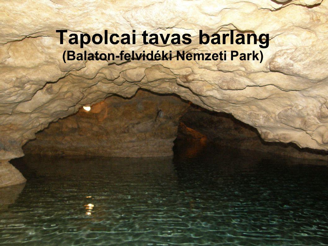 Tapolca természeti ritkaságát, 1902-ben kútásás során fedezték fel, majd tíz évvel később a látogatók előtt is megnyitották.