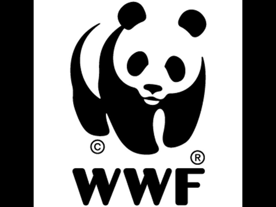 Természetvédelmi logók •WWF •Logókról •A magyar természetvédelem jelképe •Egyéb címerállatok –Túzok –Havasi cincér •Egyéb jelképek •Források