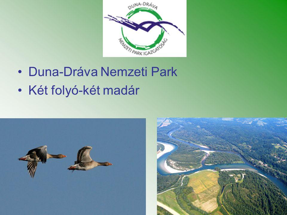 •Duna-Dráva Nemzeti Park •Két folyó-két madár