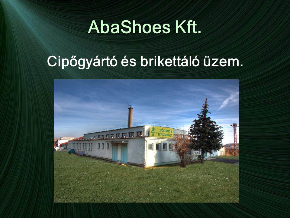 AbaShoes Kft. Cipőgyártó és brikettáló üzem.
