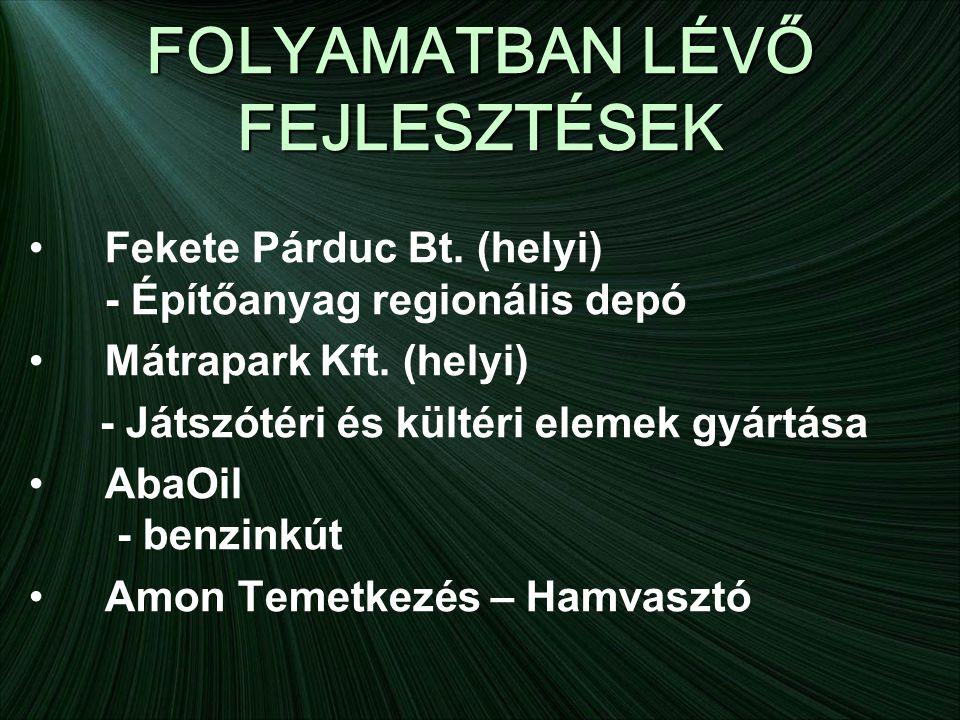 FOLYAMATBAN LÉVŐ FEJLESZTÉSEK •Fekete Párduc Bt.
