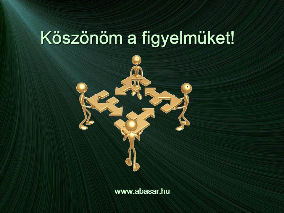 Köszönöm a figyelmüket! www.abasar.hu