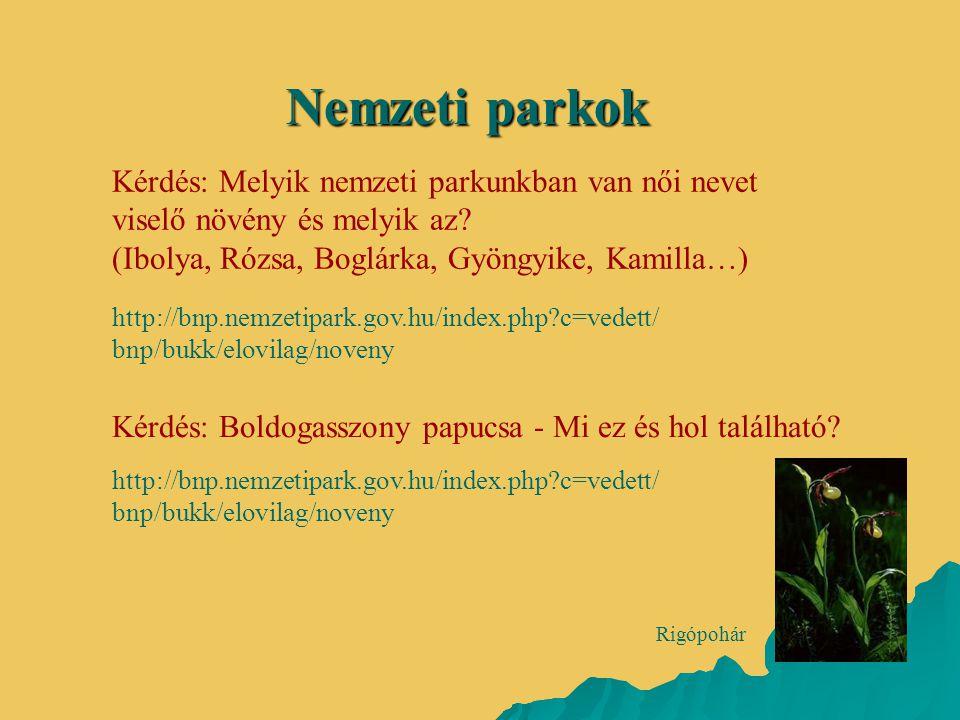 Kérdés: Melyik nemzeti parkunkban van női nevet viselő növény és melyik az? (Ibolya, Rózsa, Boglárka, Gyöngyike, Kamilla…) Nemzeti parkok http://bnp.n
