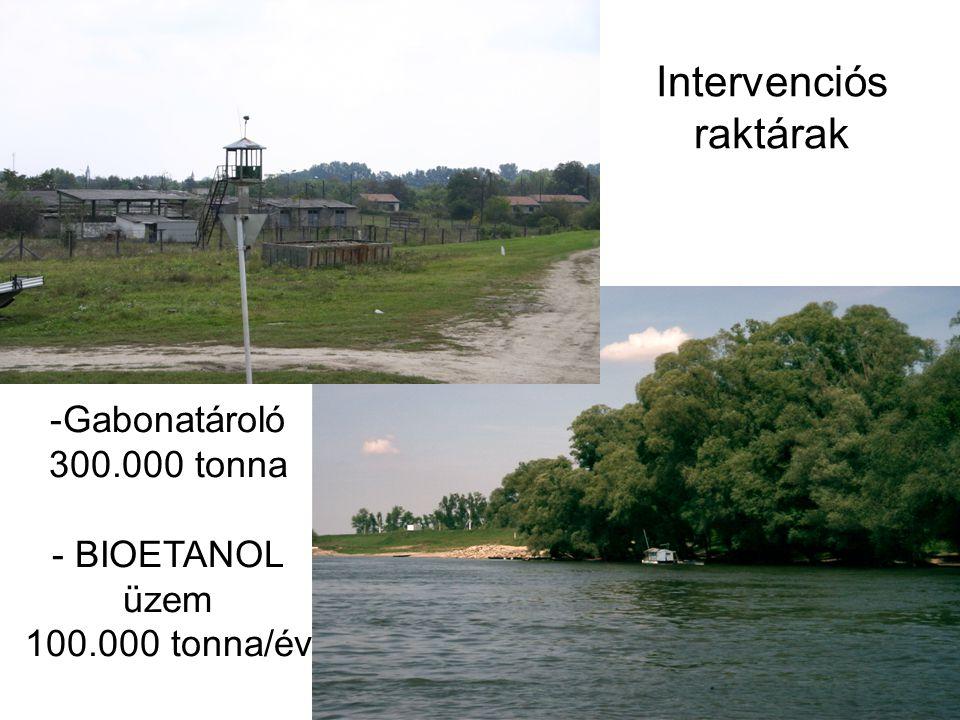 Intervenciós raktárak -Gabonatároló 300.000 tonna - BIOETANOL üzem 100.000 tonna/év