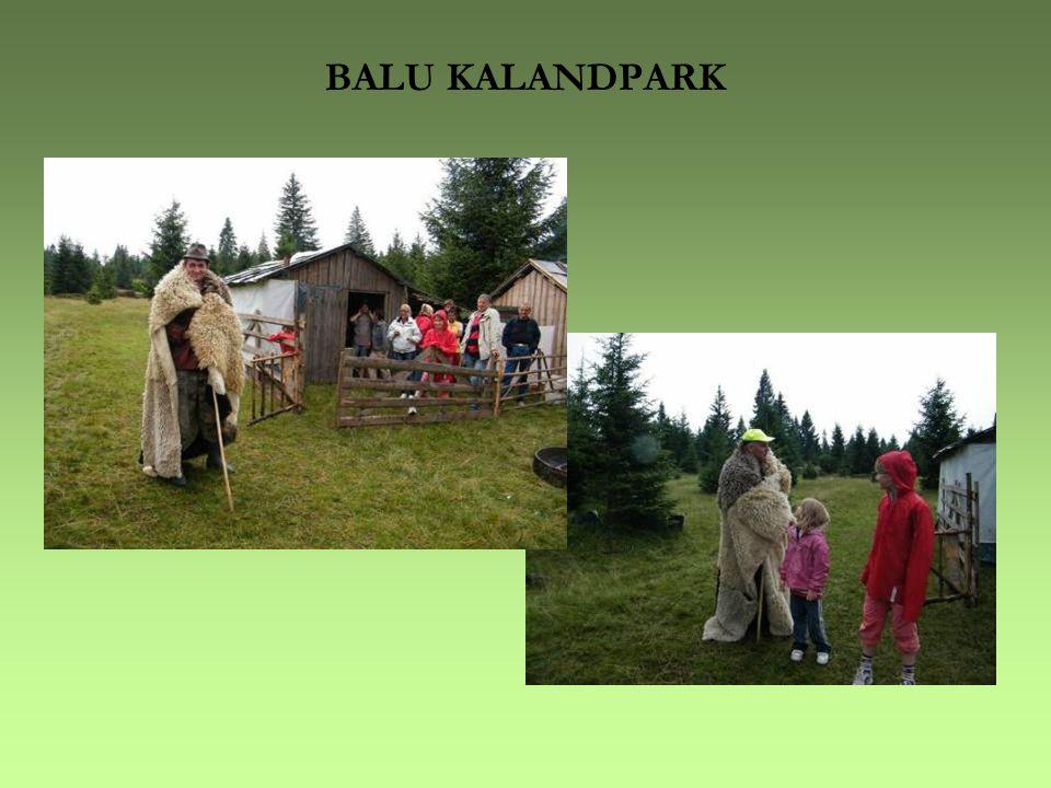 BALU KALANDPARK