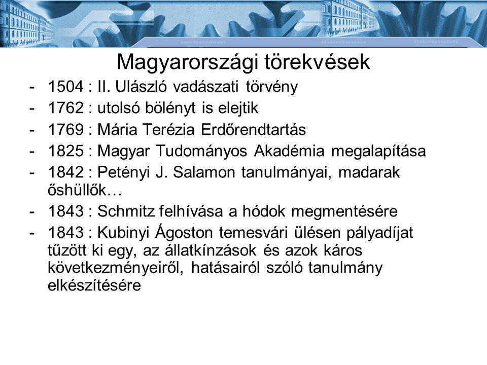 Magyarországi törekvések -1504 : II.