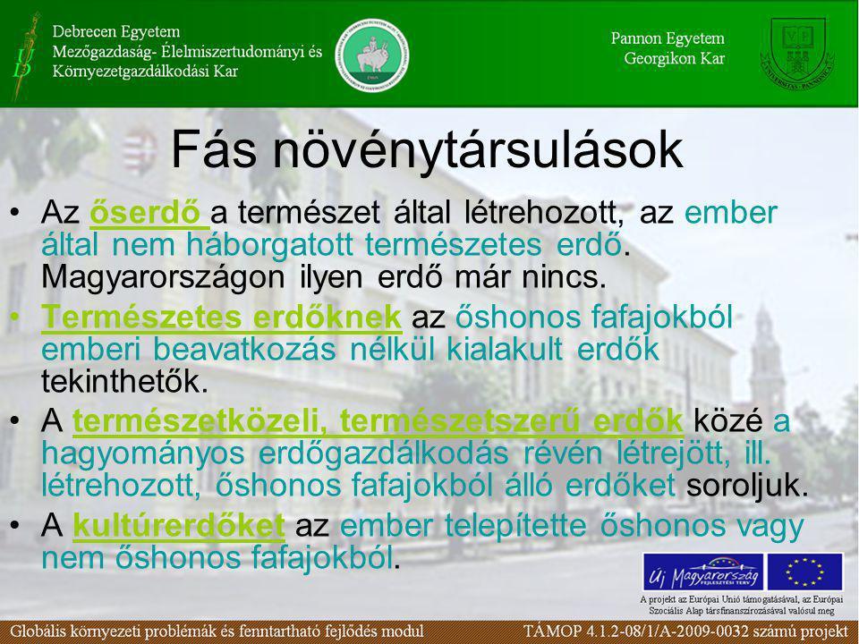 Fás növénytársulások •Az őserdő a természet által létrehozott, az ember által nem háborgatott természetes erdő. Magyarországon ilyen erdő már nincs. •