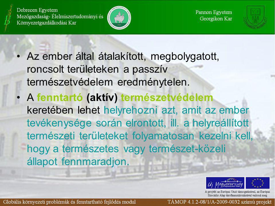 A természetvédelem folyamatos (ismétlődő) feladatai •A szükséges jogszabályok megteremtése és alkalmazása.