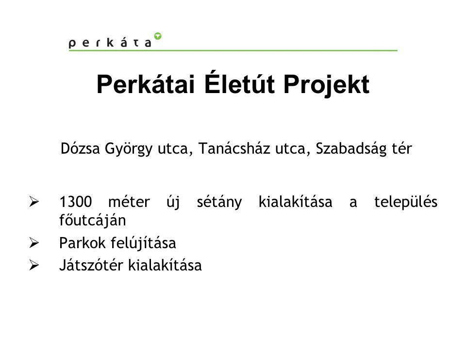 Perkátai Életút Projekt Dózsa György utca, Tanácsház utca, Szabadság tér  1300 méter új sétány kialakítása a település főutcáján  Parkok felújítása  Játszótér kialakítása